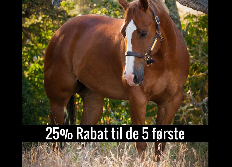 Vær blandt de 5 første – Spar 25% på dit Horseback Miracles forløb