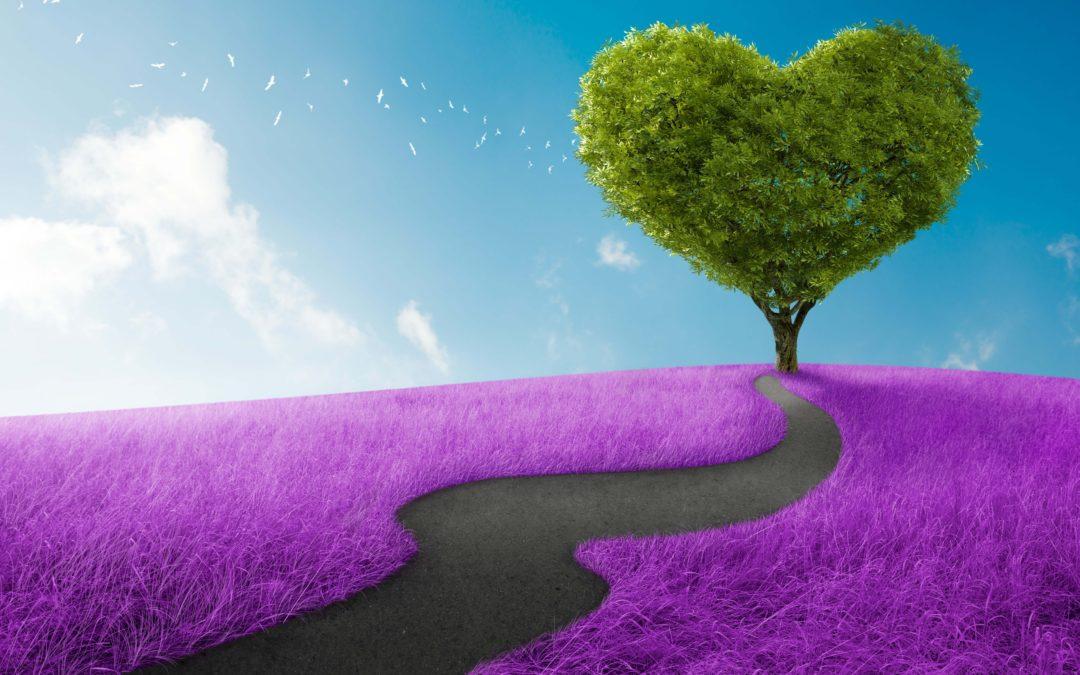 Sjælens formål – Er du på rette vej?